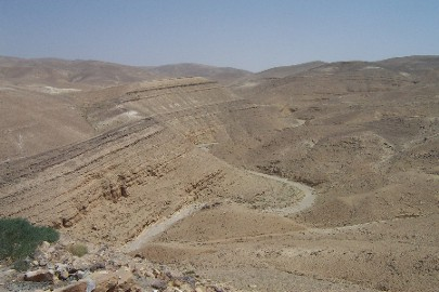 The wadi road, as seen from the Nabataean/Roman fort.