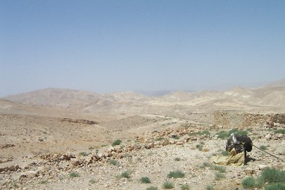 The hills on the back side of the Nabataean/Roman fort.