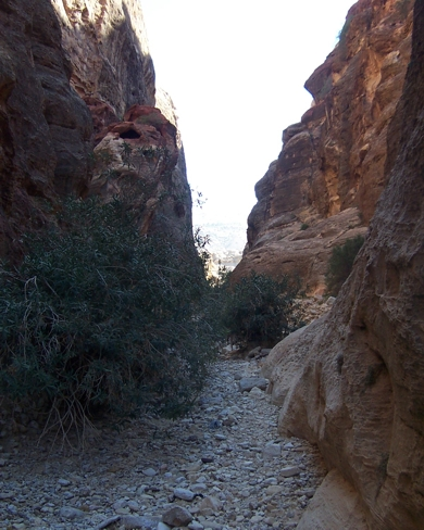The walk through the wadi is quite pleasant.